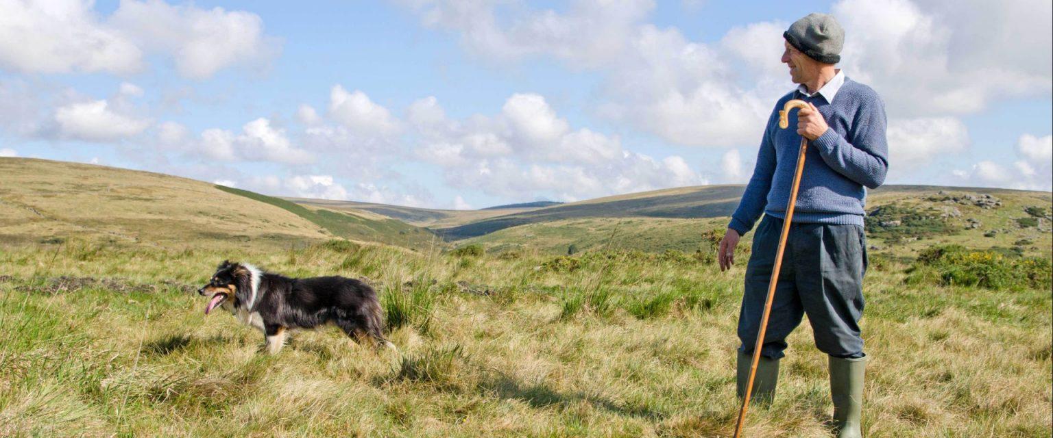 sheepdog-people-dartmoor-devon